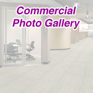 Photo Gallery Trend Carpet Amp Tile Flooring Carpeting